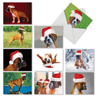 Holiday Best Boxers, Assorted Set Of Mini Christmas Note Cards - AM6295XSG