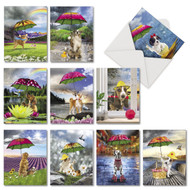 AM6823OC - Raining Dogs: Mini Assorted Set of 10 Cards