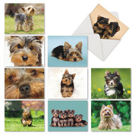 AM6833OC - Terrific Yorkshire Terriers: Mini Assorted Set of 10 Cards