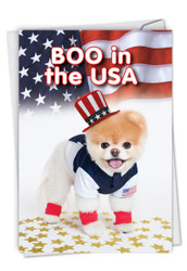 C6867BD - Boo In The USA: Greeting Card