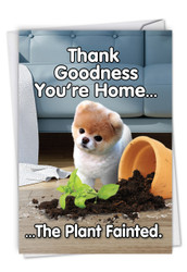 Boo's Plant Fainted, Printed Birthday Greeting Card - C6872BDG