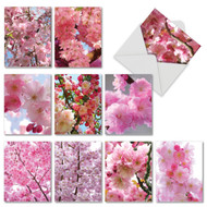 AM6861OC - Cherry Blossoms: Mini Assorted Set of Cards