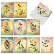 Songbird Notes, Assorted Set Of Mini Blank Note Cards - AM6948OCB