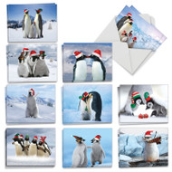 AM2951SG - Penguins and Greetings: Mini Assorted Set of Cards