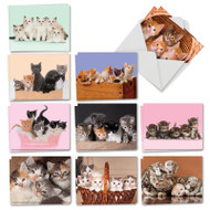 AM7058OC - Litters Letters: Mini Assorted Set of Cards