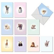 AM6726IN - Zoo Babies: Mini Mixed Set of Cards