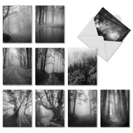 Misty Woods, Assorted Set Of Mini Sympathy Greeting Cards - AM7167SMG