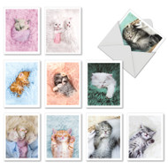 AM7168IN - Fluffy Furballs: Mini Mixed Set of Cards