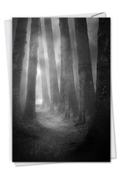 C7167ISM - Misty Woods: Paper Card