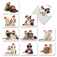 AM6596XT - Christmas Copy Cats: Mini Mixed Set of Cards