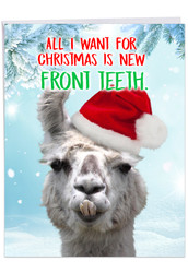 Llama Front Teeth, Extra Large Christmas Note Card - J2924XSG
