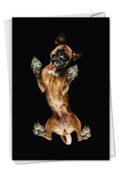 Big Under Dogs - Boxer, Printed Miss You Greeting Card - C7187AMYG