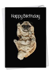 Big Under Dogs - Pug, Printed Birthday Note Card - C7187EBDG