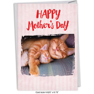 C5359MD - Cat Naps: Greeting Card