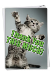 C3612TY - This Much Kitten Thank You Funny Card: Printed Card