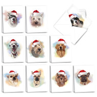 AM3497XS - Handsome Dogs: Mini Mixed Set of Cards