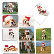 AM6296XS - Bouncing Beagles: Mini Assorted Set of Cards