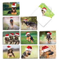 AM6828XS - Gorgeous German Shepherds: Mini Mixed Set of Cards