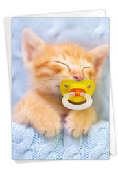 Cat Pacifiers - Kitty, Printed Birthday Note Card - C9171DBDG