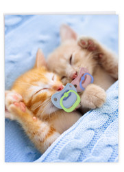 Cat Pacifiers - Kittens, Extra Large Birthday Greeting Card - J9171ABDG-US