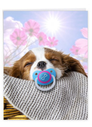 Puppy Pacifiers - Blue, Jumbo Birthday Note Card - J9172HBDG