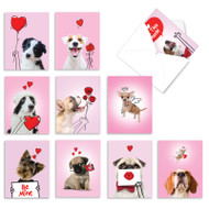 Dog Love Doodles, Assorted Set Of Mini Valentine's Day Greeting Cards - AM9187VDG