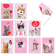 Cat Love Doodles, Assorted Set Of Mini Valentine's Day Note Cards - AM9188VDG