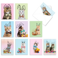 Hoppy Cats, Assorted Set Of Mini Easter Greeting Cards - AM9189EAG