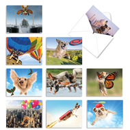 The Flying K9, Assorted Set Of Mini Blank Note Cards - AM6448OCB