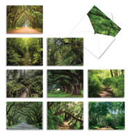Nature Trails, Assorted Set Of Mini Blank Note Cards - AM6467OCB