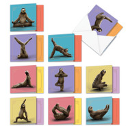 AMQ6255OC - Sloth Yoga: Mini Square-Top Assorted Set of Cards