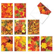 Leaf A Message, Assorted Set Of Mini Blank Note Cards - AM2009OCB