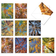 Over The Top, Assorted Set Of Mini Blank Note Cards - AM2006OCB