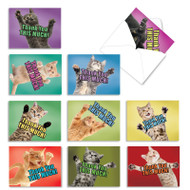 Cat Big Thanks, Assorted Set Of Mini Blank Note Cards - AM2368TYB