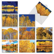 Golden Foliage, Assorted Set Of Mini Blank Greeting Cards - AM1729OCB