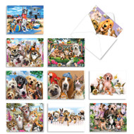Off The Leash, Assorted Set Of Mini Blank Note Cards - AM6641OCB