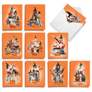 Spooky Animal Bands, Assorted Set Of Mini Halloween Greeting Cards - AM9541HWG