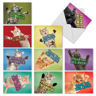 Cat Big Thanks, Assorted Set Of Mini Thank You Greeting Cards - AM2368TYG