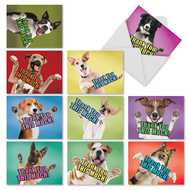 Dog Big Thanks, Assorted Set Of Mini Thank You Note Cards - AM2369TYG