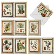 Pining For You, Assorted Set Of Mini Thank You Greeting Cards - AM6462TYG