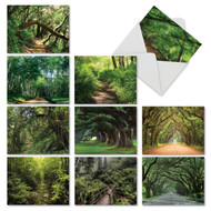 Note Cards Featuring Scenic Nature Trails