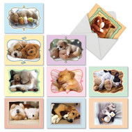 Cuddle Buddies, Assorted Set Of Mini Thank You Note Cards - AM6469TYG