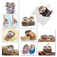 M6541TY - Cards From The Hedge: Assorted Set of 10 Cards