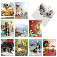 Puppy Love, Assorted Set Of Mini Thank You Greeting Cards - AM6546TYG
