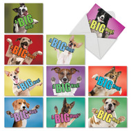 M6615OC - Dog A Big Hug: Assorted Set of 10 Cards
