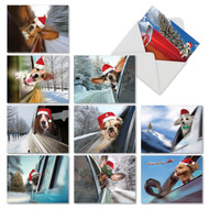 M6481XS - Holiday Doggie In The Window: Assorted Set of 10 Cards