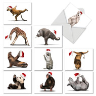 M6547XS - Yuletide Zoo Yoga: Mixed Set of 10 Cards