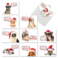M6690XS - Santa Pups: Assorted Set of 10 Cards