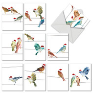 M3318XS - High Wire Birds: Mixed Set of 10 Cards