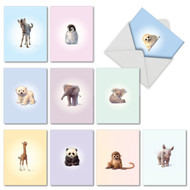 Zoo Babies, Assorted Set Of Mini All Occasions Note Cards - AM6726OCG